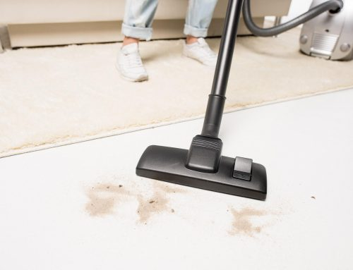 The Best Capet Cleaning Guide for home owners.
