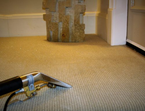 How to Remove Varnish Stains on Carpet ( 2021)
